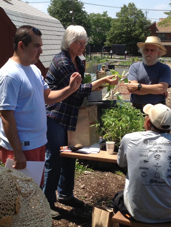 Gardeners chatting
